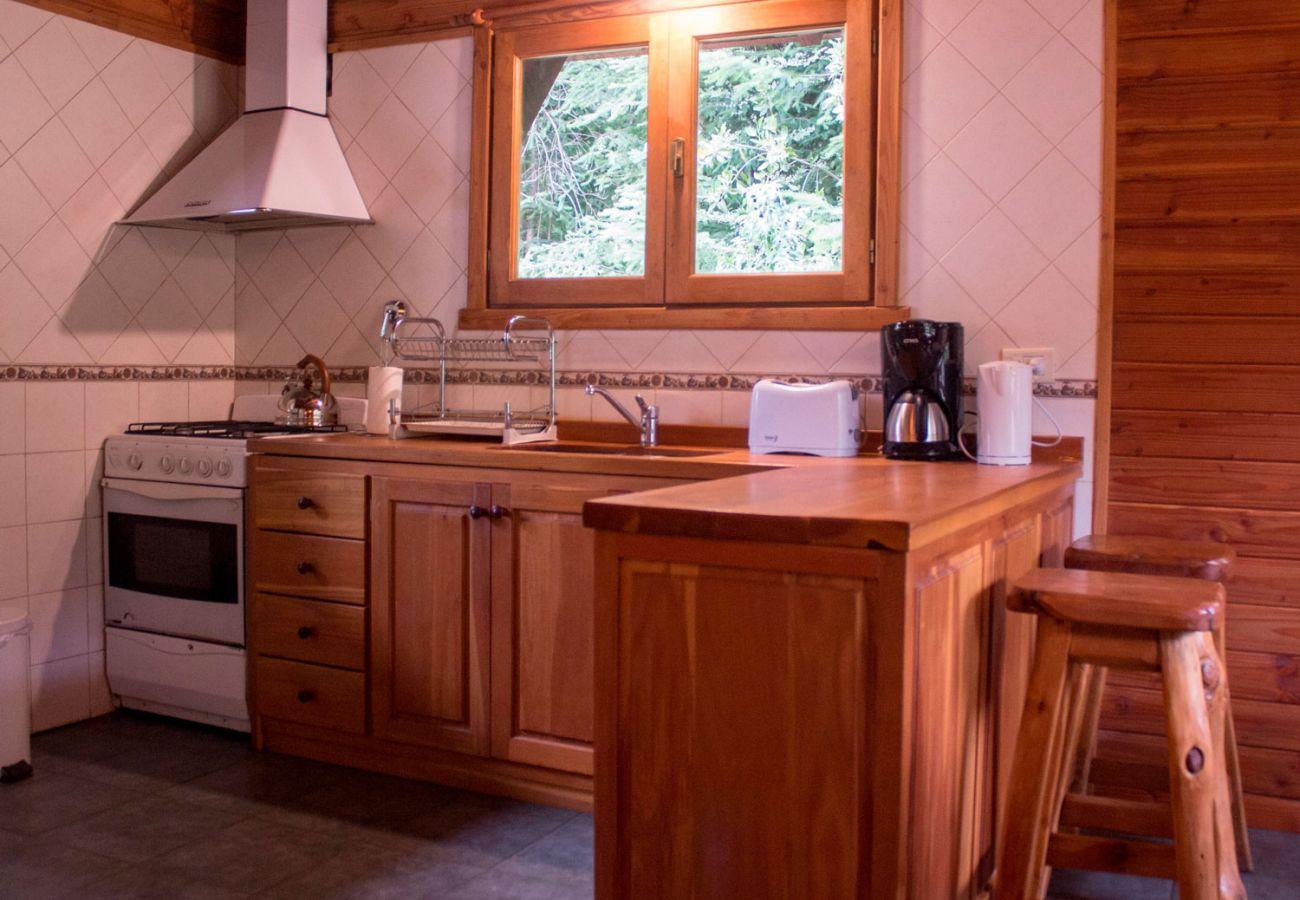 Cocina completa con barra BOG Patagon Dreams Villa La Angostura