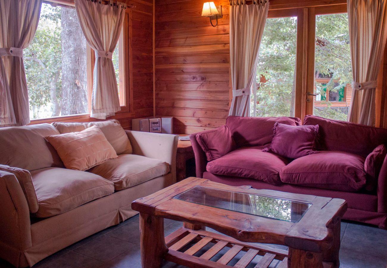 Living con amplios ventanales BOG Patagon Dreams Villa La Angostura
